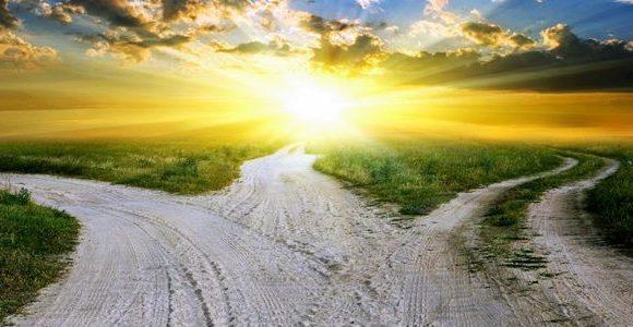 «Veien videre»